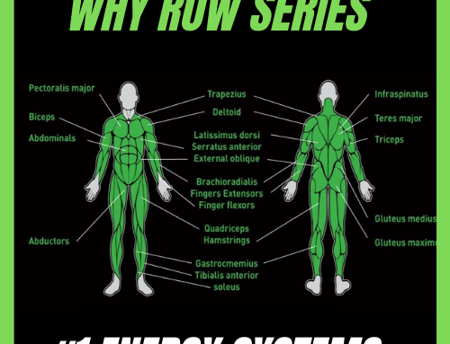 Welcome to the Why Row Series : #1 Energy Systems